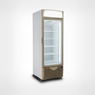 upright-ddisplay-freezer-dynamic-tc-550fd